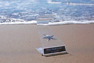 Premios Estrella de Mar: más de 110 espectáculos inscriptos